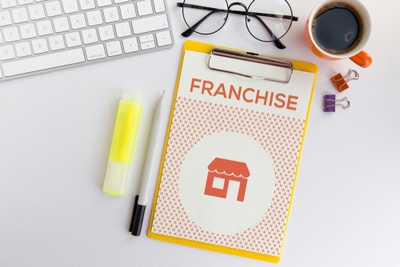Why might a franchise suit self-employed HR consultants?